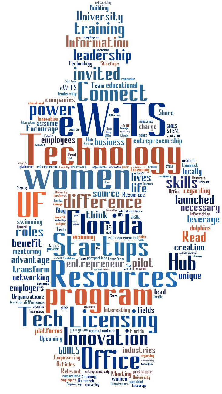 eWiTS Word Cloud